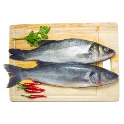 Fresh Sea Bass ~ 1PCs