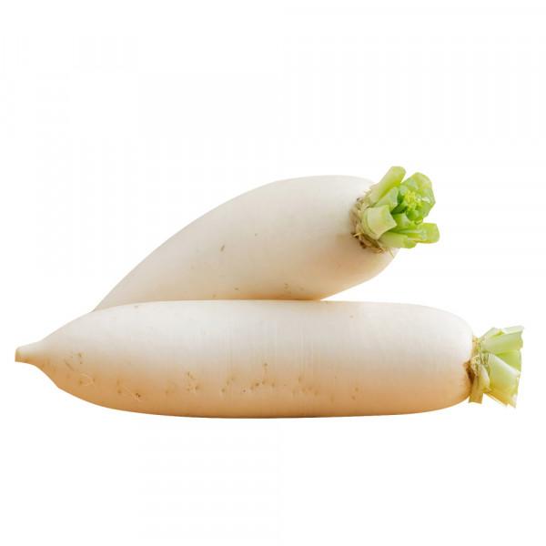 White Radish - 1PCs