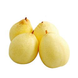 Ya Pears --4CH