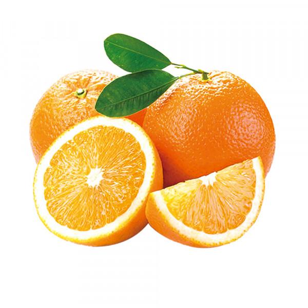 Sweet Oranges -3 PCs